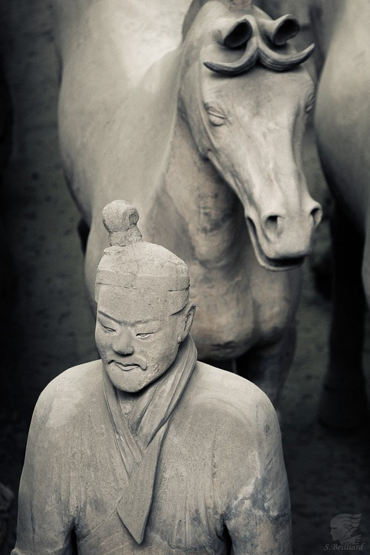 Terracotta Army soldier and horsed