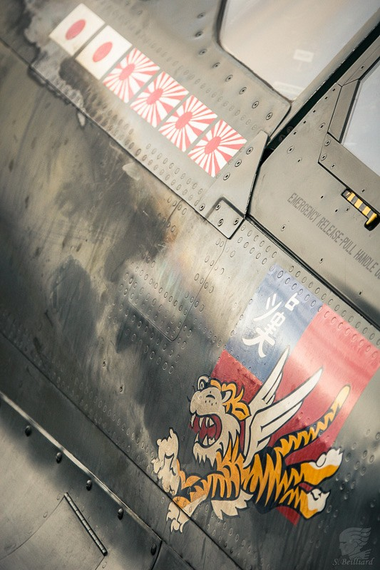 Flying Tiger Hawk