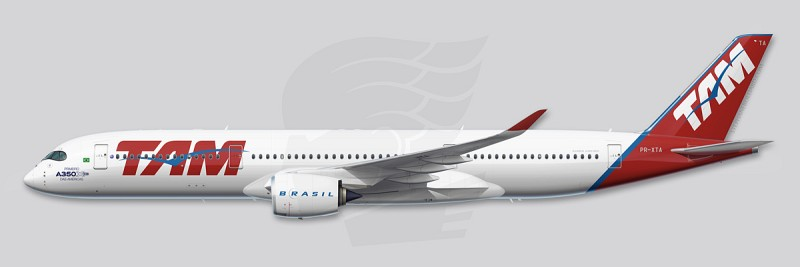 http://stephanebeilliard.com/site/storage/cache/images/001/143/Profile-A350-TAM-PRXTA-SBeilliard,medium_large.1452955654.jpg