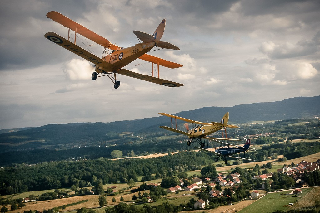 Tiger Moth & Moth Major